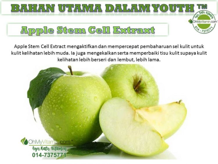 3. APPLE STEM CELL EXTRACT