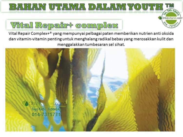 5 BAHAN UTAMA DALAM  YOUTH™ VITAL REPAIR COMPLEX