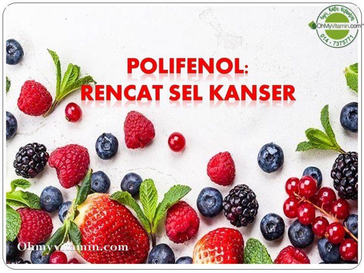 POLIFENOL RENCAT SEL KANSER