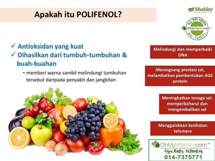 apa itu polifenol