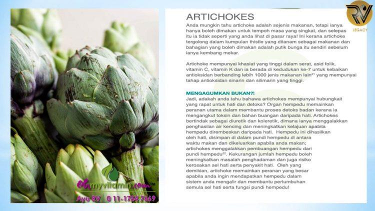 ARTICHOKES ANTARA 11 MAKANAN UNTUK DETOX