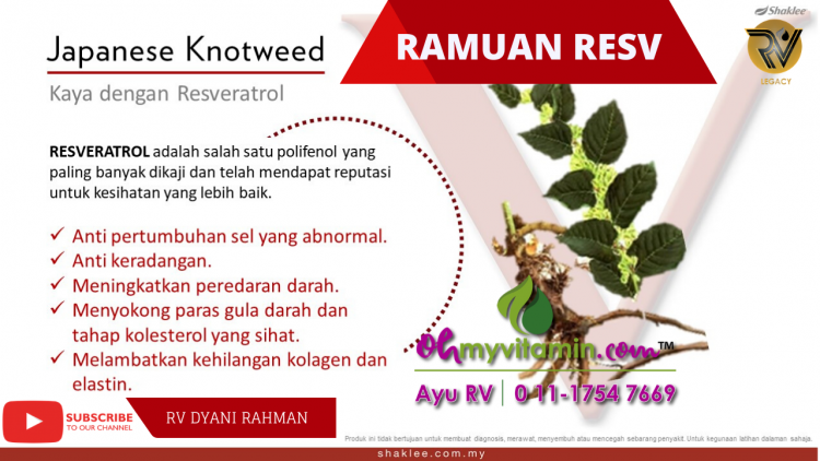 JAPANESE KNOTWEED DALAM RESV